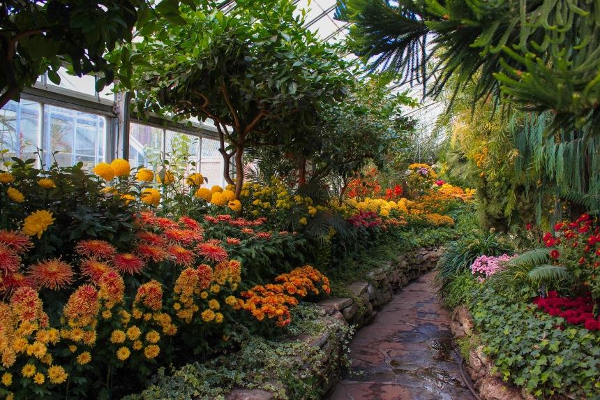 5. Allan Gardens.JPG